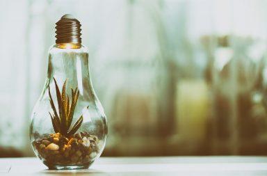 Crowdfunding The ESG Revolution Spark Crowdfunding blog